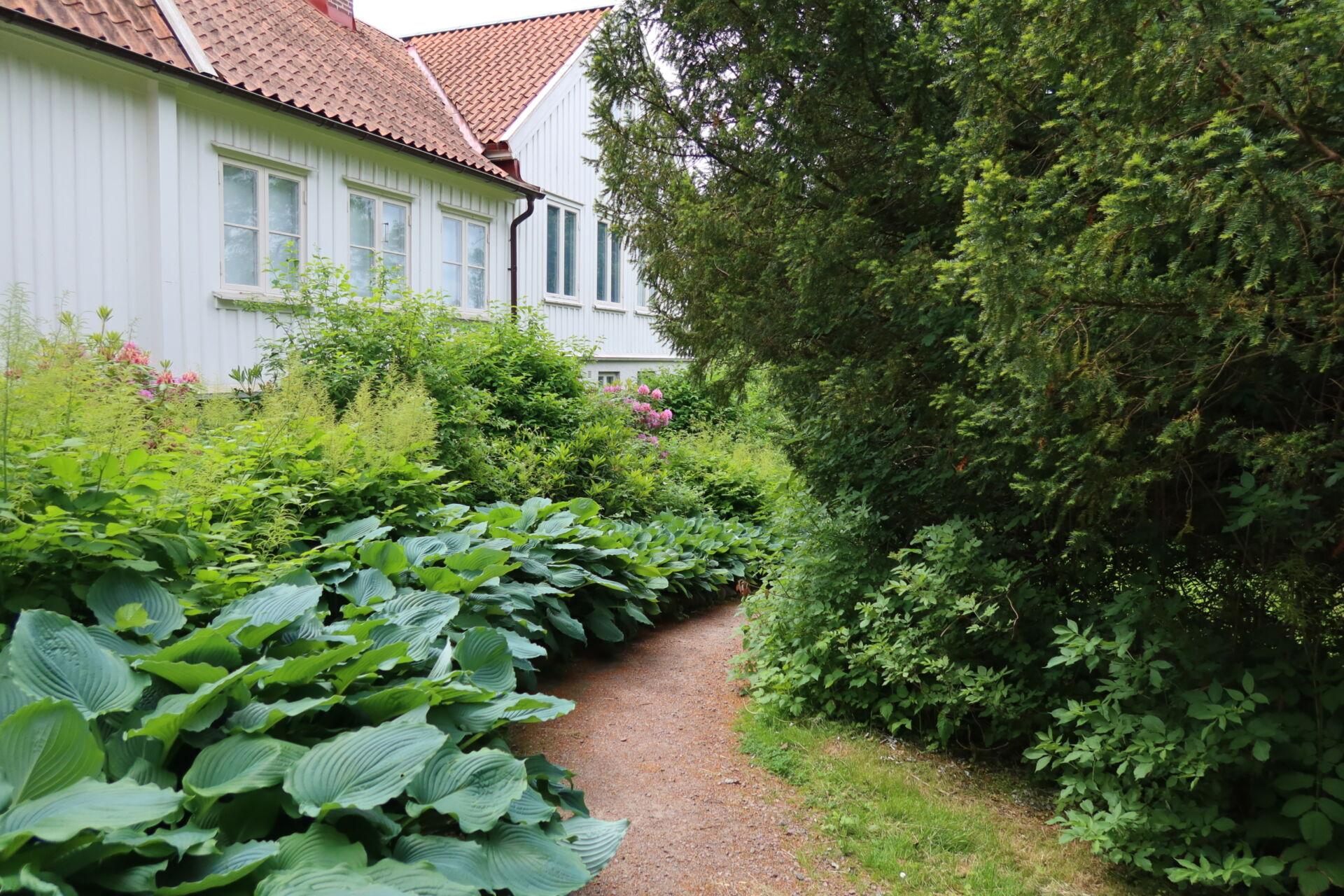 Utomhusvisning av Lilla Änggården 22 aug